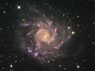 NGC7424, spiral galaxy with prominent central bar