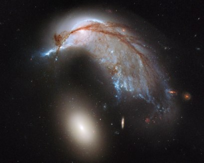 The Porpoise Galaxy